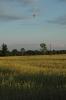 Lot 16.07.2011 :: SAM_1903